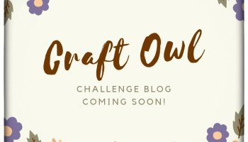 Craft Owl Chal